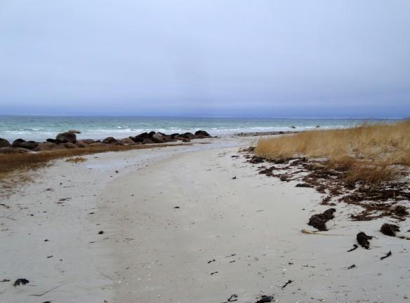 winter ocean walk
