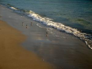 beach reading spot