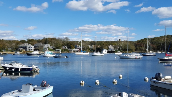Woods Hole marina